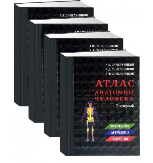 Синельников: Атлас анатомии человека. В 4-х томах. (Копия)  (AB)